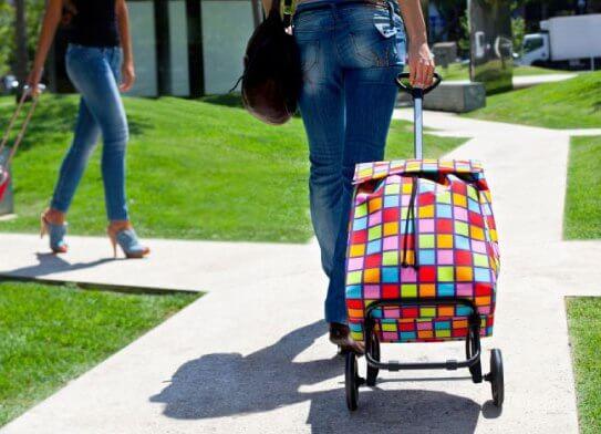 девушка с сумкой на колесиках
